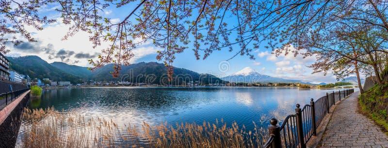 Immagine di panorama del monte Fuji e del lago immagini stock libere da diritti