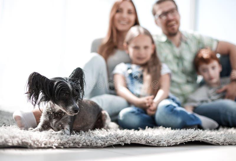 Immagine di sfondo della famiglia felice con l'animale domestico fotografia stock libera da diritti