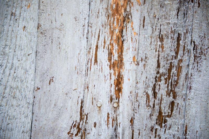 Immagine di sfondo di legno bianco rustico immagine stock libera da diritti