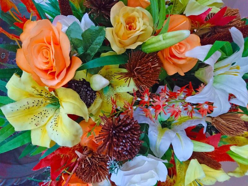 Immagine di sfondo variopinta di varietà dei fiori immagini stock