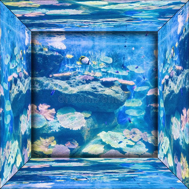 Immagine di specchio dell'acquario fotografie stock libere da diritti