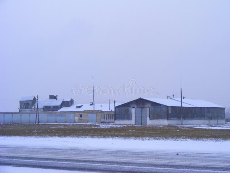 Immagine di vecchia azienda agricola in Bielorussia, agricoltura con le mucche, vista di inverno con la strada nevosa fotografie stock
