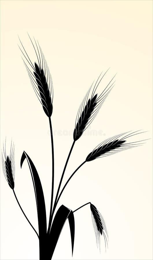 immagine di vettore delle orecchie wheaten fotografia stock