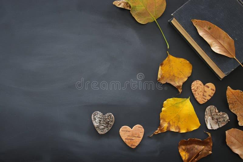 immagine di vista superiore delle foglie e del libro di autunno asciutti sopra il fondo della lavagna fotografia stock libera da diritti