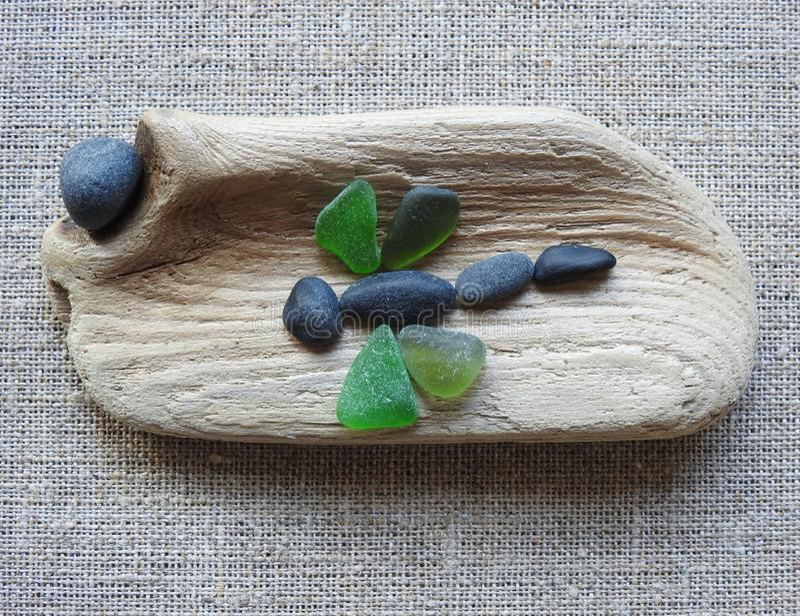 Immagine fatta a mano - libellula su superficie di legno, Lituania fotografia stock