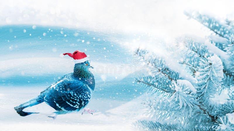Immagine favolosa di Natale Cappello tuffato di Santa nella carta magica del nuovo anno della foresta di inverno fotografia stock