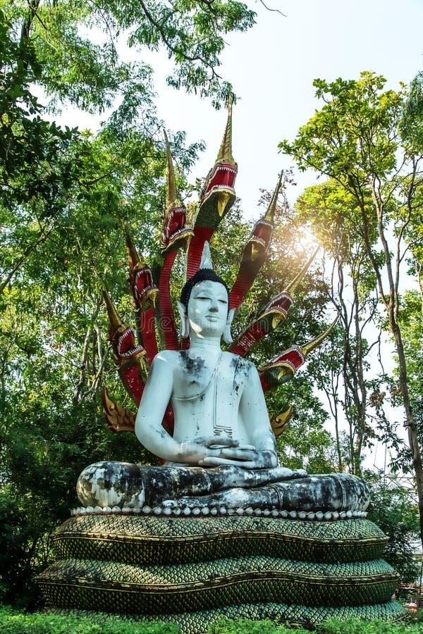 Immagine messa di Buddha protetta dal naga fotografie stock libere da diritti