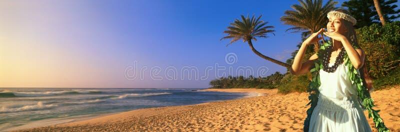 Immagine panoramica composita del ballerino e della linea costiera indigeni hawaiani in Hawai fotografia stock