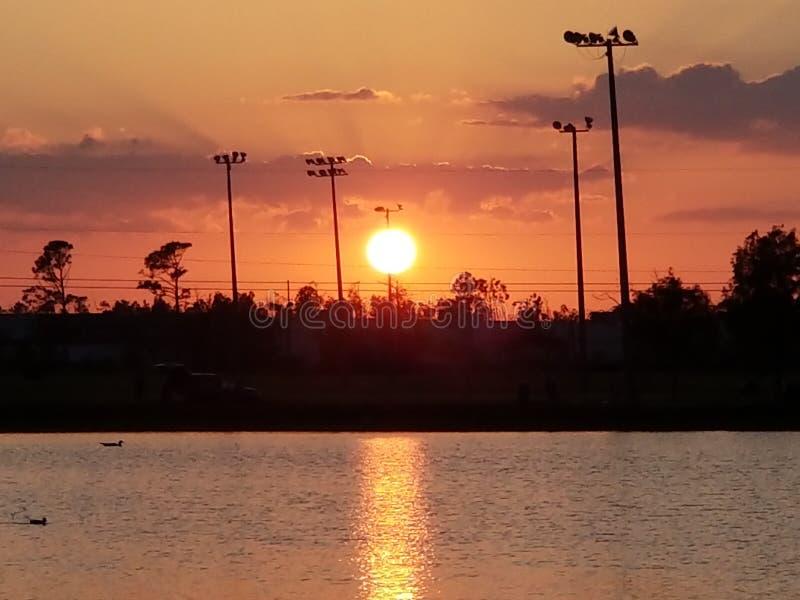 Immagine perfetta! Orange Hot immagini stock