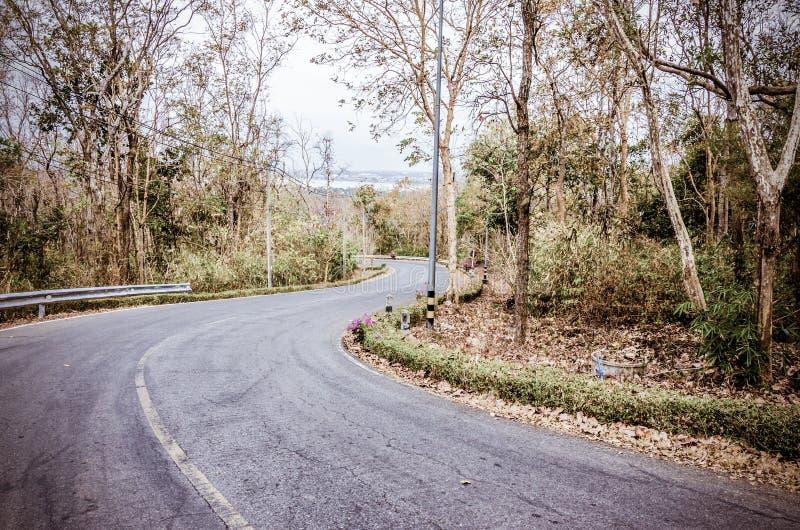Immagine tonificata annata della strada curva serpente immagini stock libere da diritti