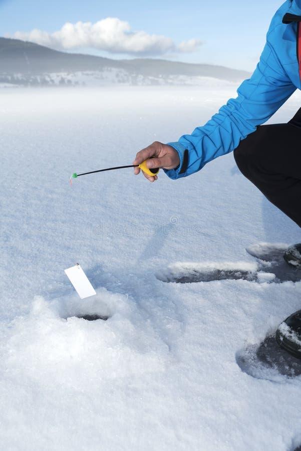 Immagine verticale su Internet concettuale di fotografia della neve che phishing frode finanziaria immagini stock