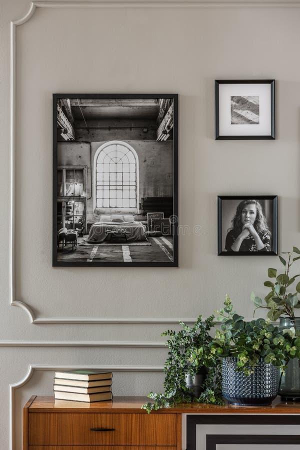 Immagini in bianco e nero sulla parete grigia con il modanatura sopra le piante verdi in vaso di vetro immagini stock libere da diritti