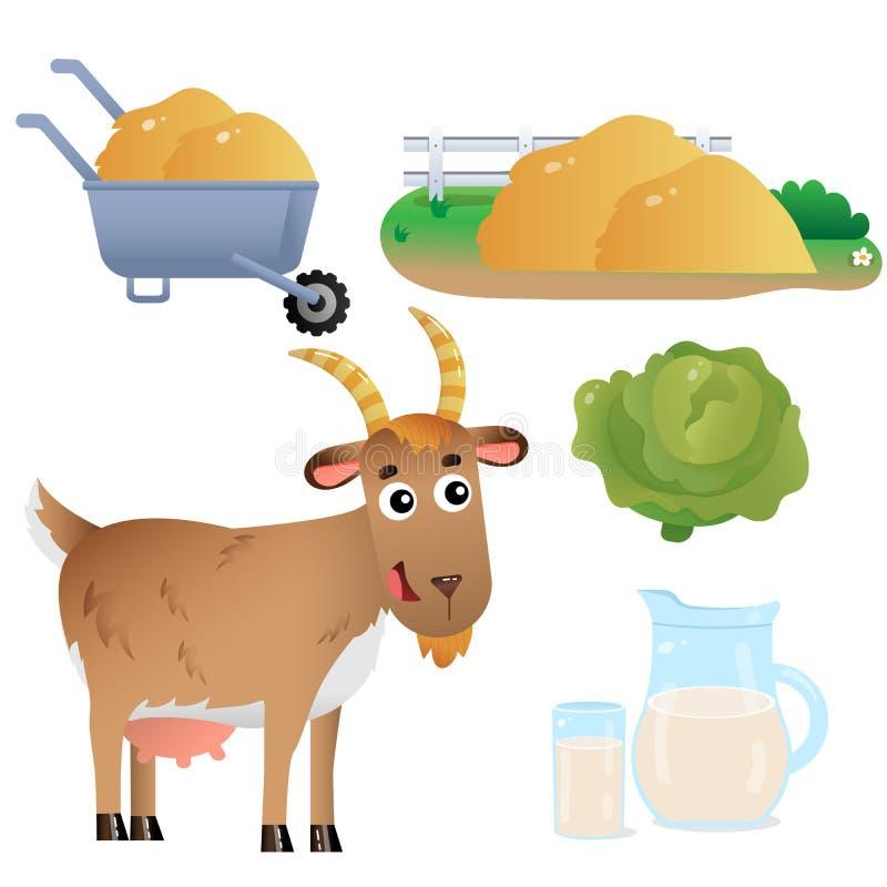 Immagini a colori di una capra da tata con latte, cavolo cappuccio e fieno su fondo bianco Animali da allevamento Set di illustra illustrazione vettoriale