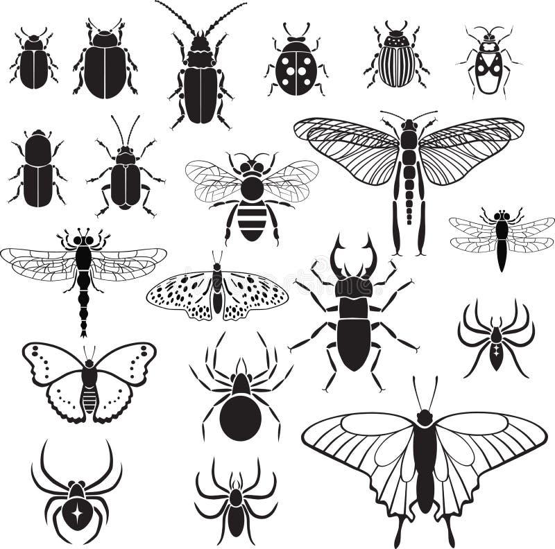 20 immagini di vettore degli insetti fotografia stock