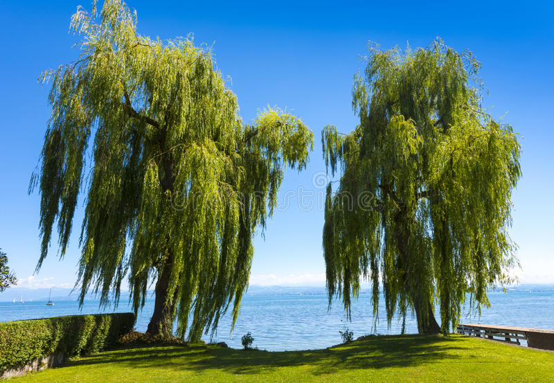 Immenstaad - Lake Constance, Baden-Wuerttemberg, Germany, Europe royalty free stock image