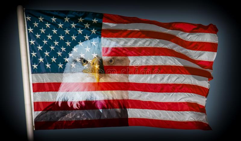 Immer aufmerksamer dunkler Hintergrund der amerikanischen Flagge und des Weißkopfseeadlers stockfotografie