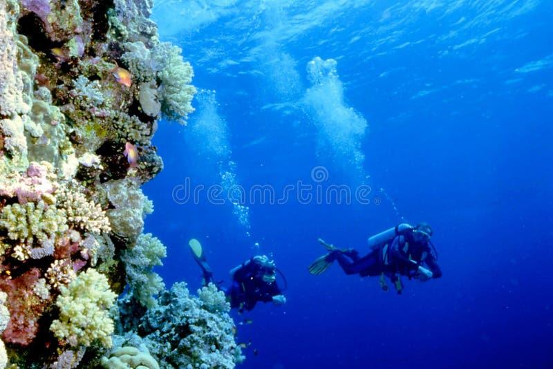 Immersione con bombole fotografie stock libere da diritti