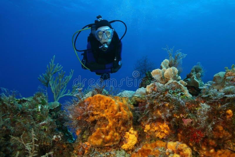 Immersione con bombole della donna sopra una barriera corallina fotografia stock