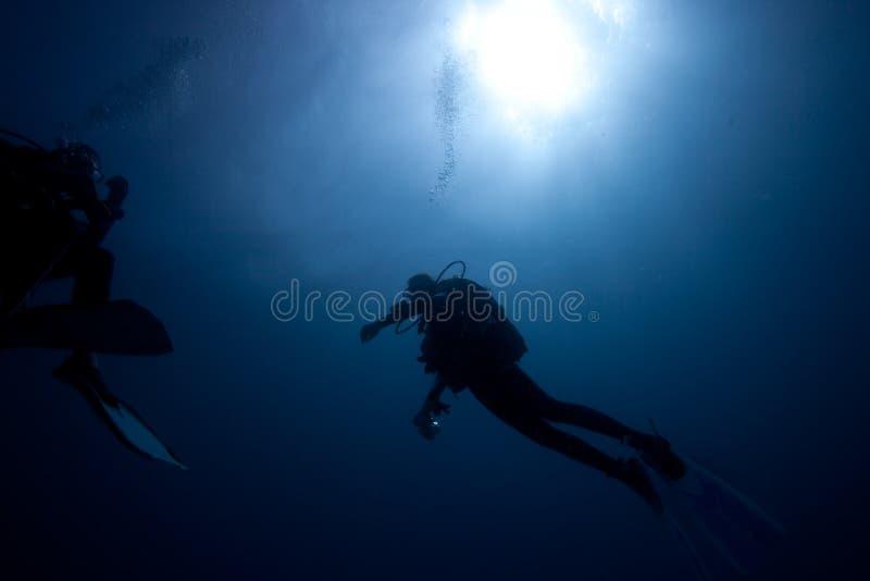 Immersione subacquea immagine stock