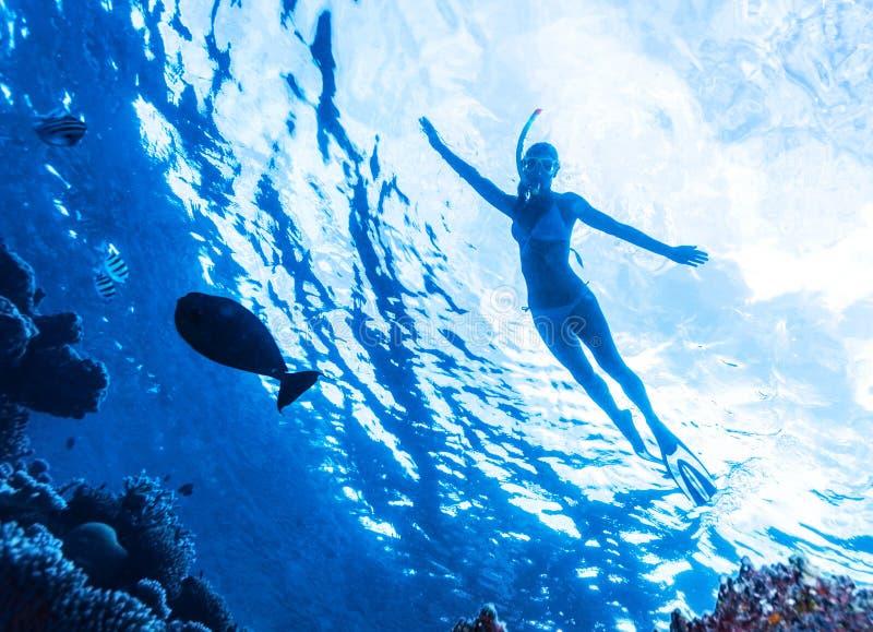 Immersione subacquea attiva della donna fotografia stock
