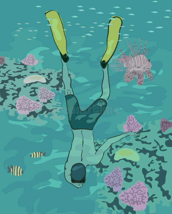 Immersione subacquea del ragazzo alla barriera corallina illustrazione di stock
