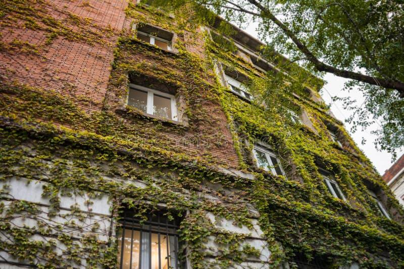 Immeuble moderne couvert en montant l'usine photographie stock libre de droits