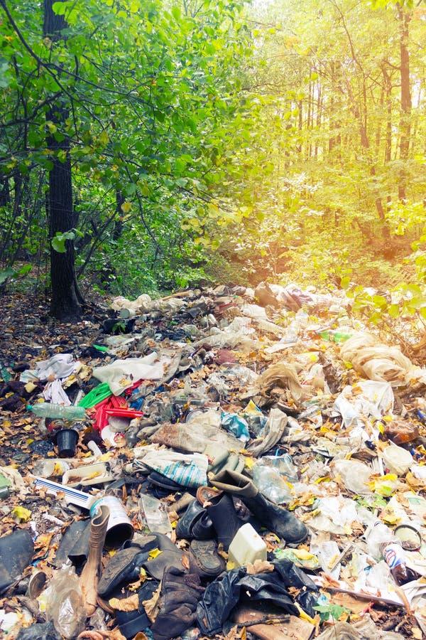 Immondizia nella foresta immagine stock