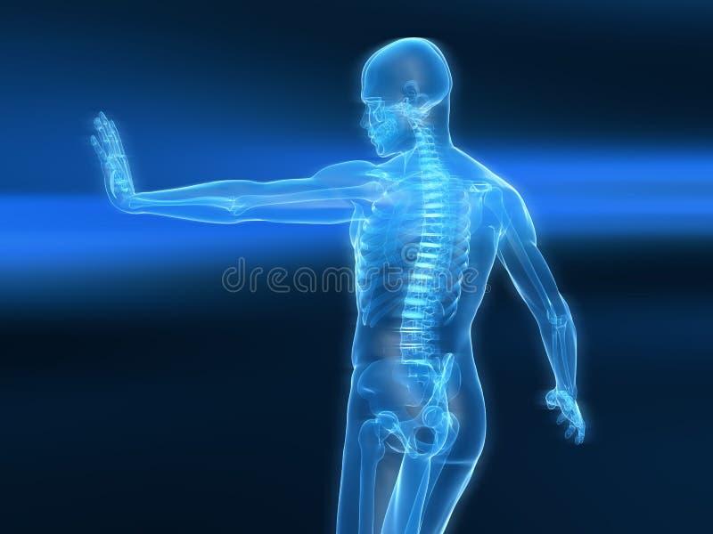 Download Immune Defense Illustration Stock Illustration - Image: 15436571