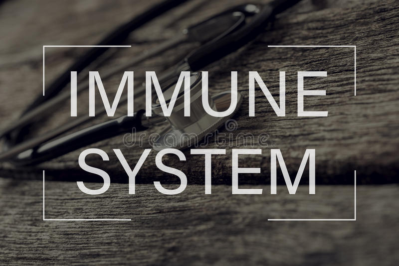 Immune system text over stethoscope on textured wooden boards royalty free stock photo
