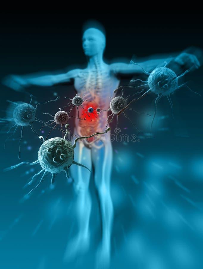 Immunitet mot sjukdomar vektor illustrationer