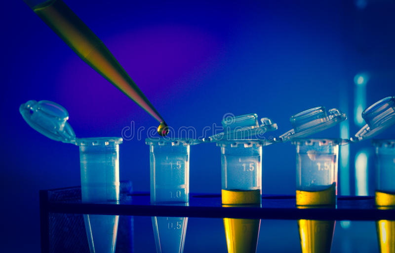 Immunological research royalty free stock photography