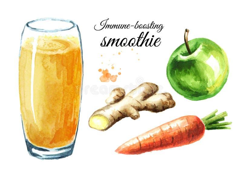 Immuun-opvoerend smoothie met de reeks van Apple, van de wortel en van de gember Waterverfhand getrokken die illustratie op witte stock foto