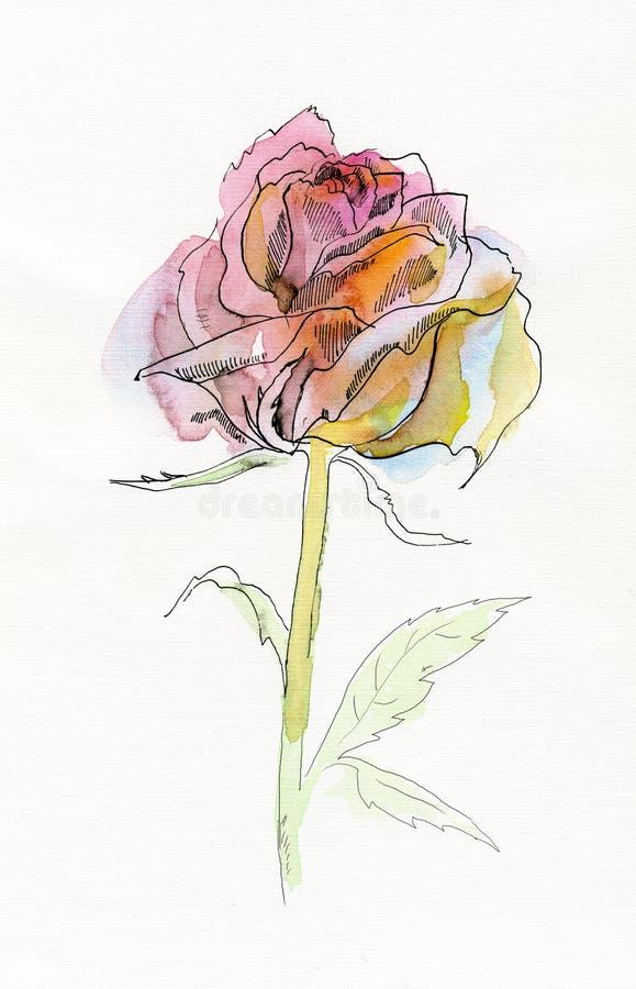 Impallidica - il colore rosa è aumentato. royalty illustrazione gratis