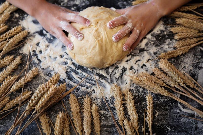 Impasti la pasta con gli ingredienti su fondo scuro immagine stock libera da diritti