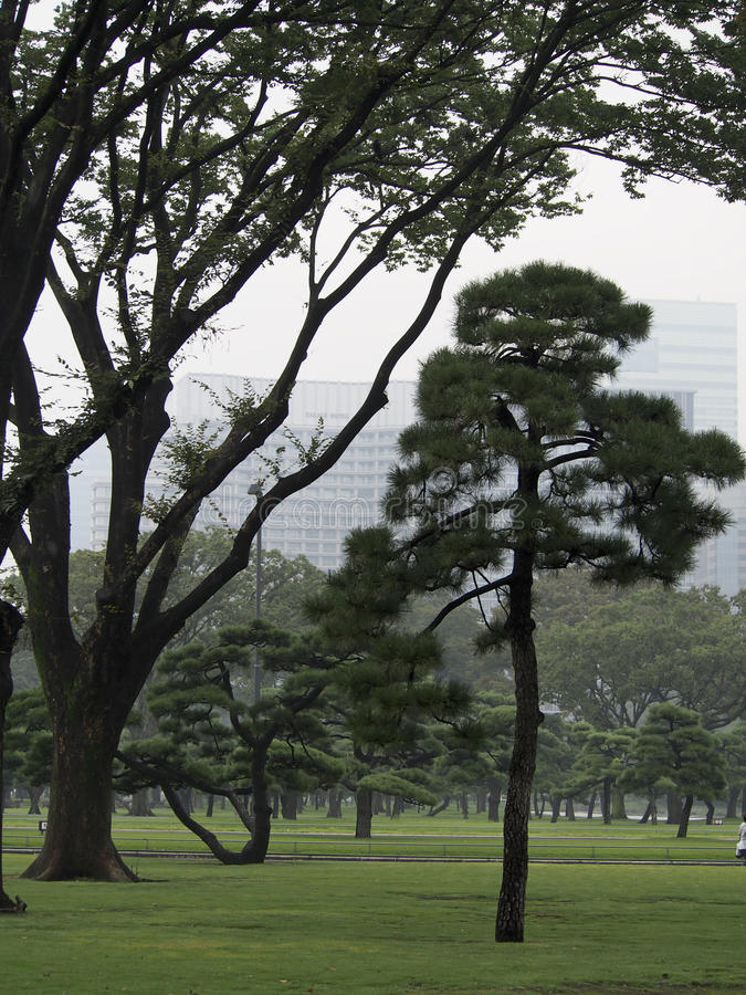 Download Imperial Garden Tokyo stock image. Image of green, japan - 83713983