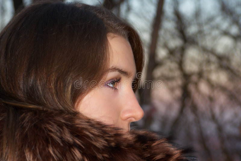 Download Impetuous Glance stock photo. Image of energy, color, mystery - 1848398