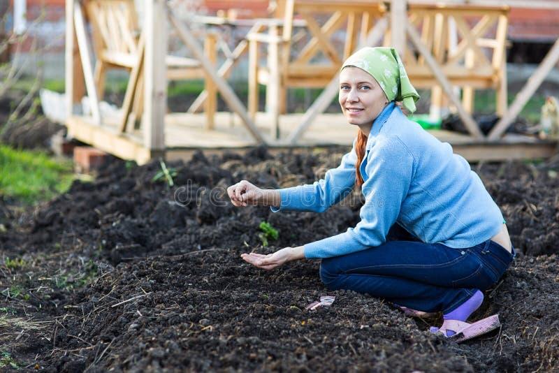 Impianti del giardino Giovane donna che lavora nel giardino Lifesty sano fotografia stock libera da diritti