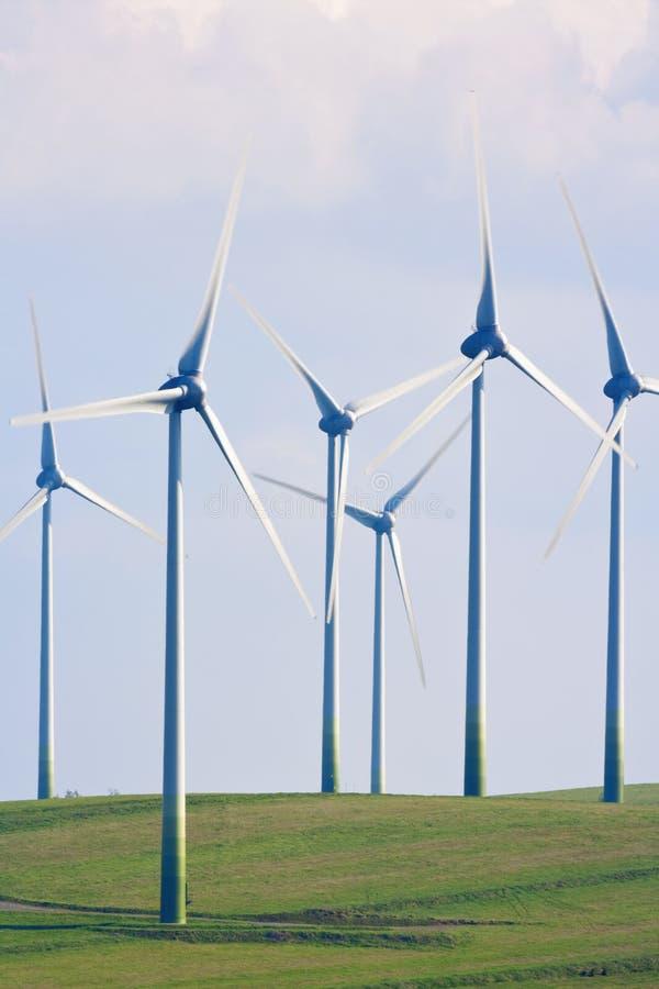 Impianto agricolo a fini energetici del vento fotografia stock libera da diritti
