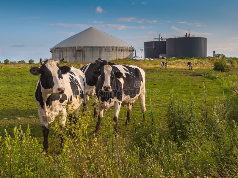 Impianto di biogas su un'azienda agricola immagine stock libera da diritti