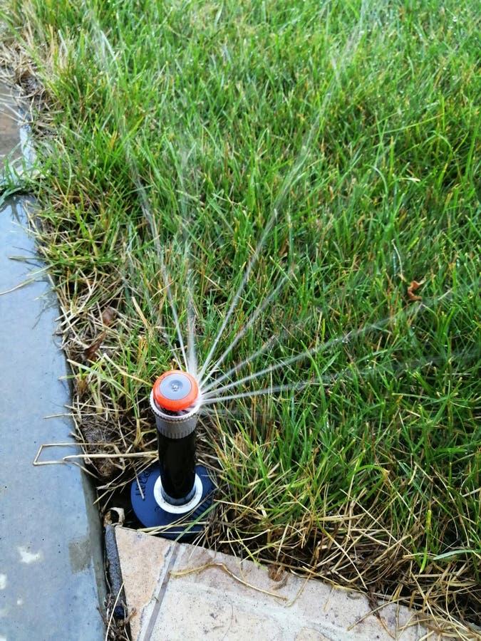 Impianto di irrigazione automatico per il giardino vicino al marciapiede immagine stock libera da diritti