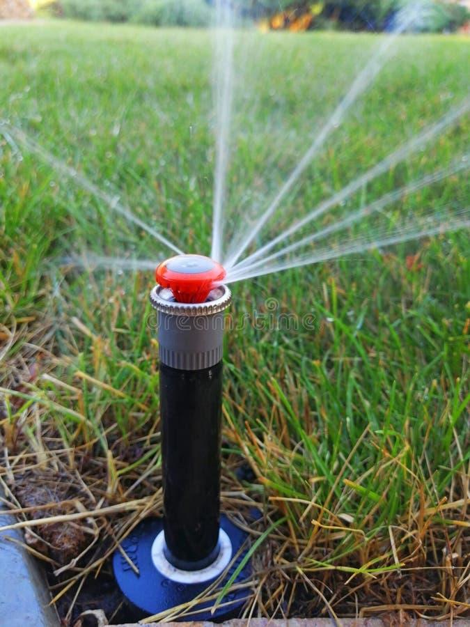 Impianto di irrigazione automatico per il giardino vicino al marciapiede immagine stock