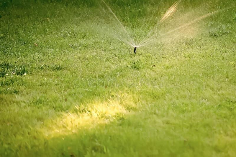 Impianto di irrigazione Un primo piano di un impianto di irrigazione automatico meccanico ha spruzzato l'acqua fredda immagini stock