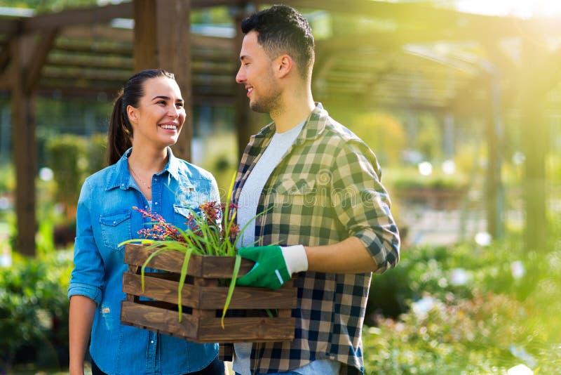 Impiegati del Garden Center fotografia stock libera da diritti
