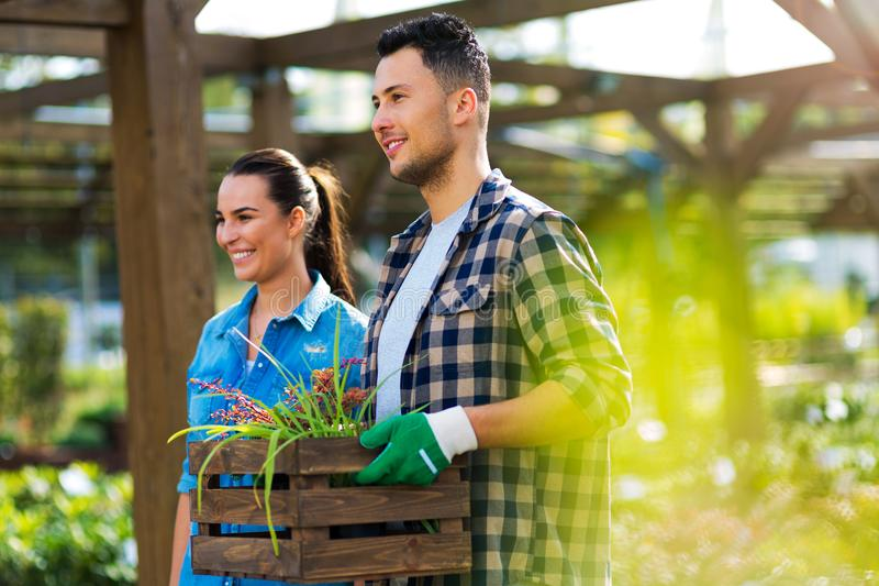 Impiegati del Garden Center fotografia stock