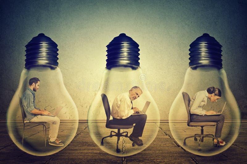 Impiegati della società che si siedono nella fila dentro la lampada elettrica facendo uso del lavorare al computer immagine stock