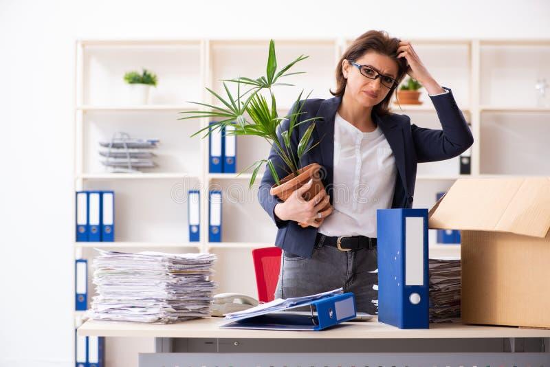 Impiegato femminile di mezza et? che ? infornato dal suo lavoro fotografia stock libera da diritti