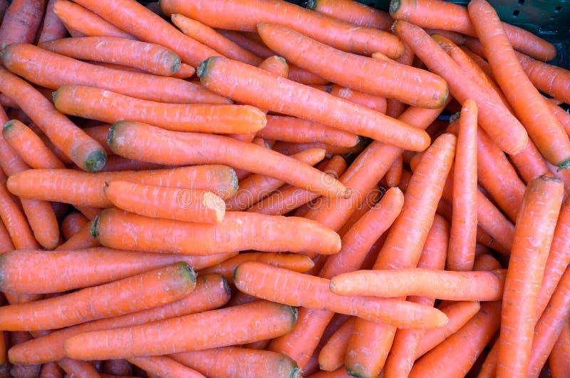 Impilato legato delle carote crude fresche fotografia stock libera da diritti