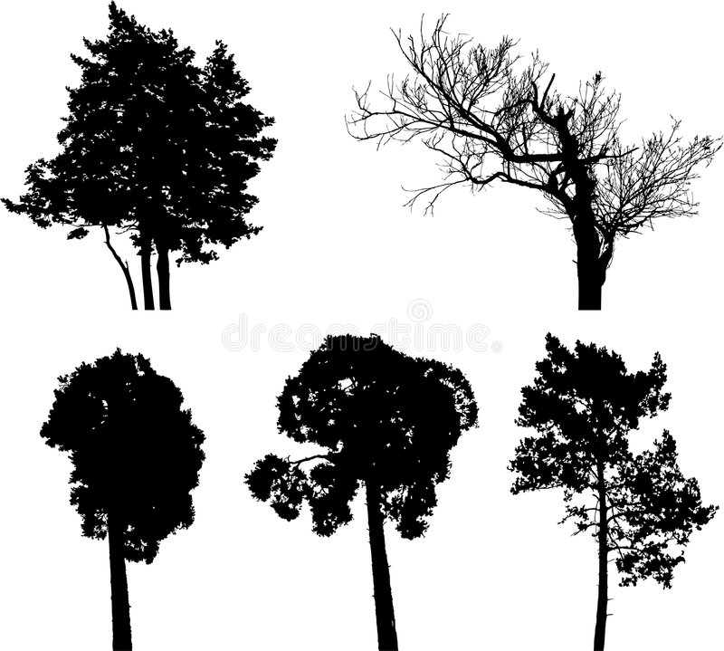 Imposti gli alberi isolati - 7 illustrazione vettoriale