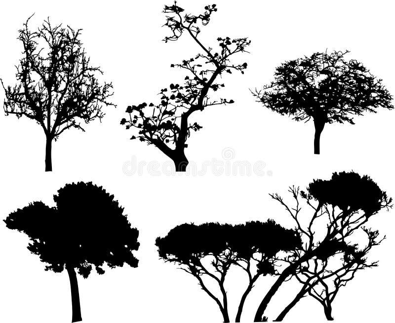 Imposti gli alberi isolati - 9 illustrazione di stock