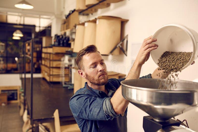 Imprenditore che versa i chicchi di caffè crudi in un mackintosh moderno di torrefazione immagine stock libera da diritti